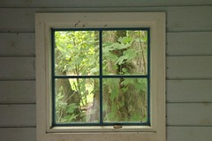 Window in the Gardens of Louisiana (Sakena) Tags: trees plants art window nature leaves gardens humlebk louisisanamuseumofmodernart
