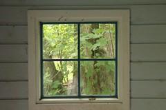 Window in the Gardens of Louisiana (Sakena) Tags: trees plants art window nature leaves gardens humlebæk louisisanamuseumofmodernart