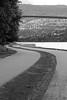 Stanley Park (A Great Capture) Tags: ocean park bridge sea canada water wall bc pacific path britishcolumbia columbia curvy double seawall stanley british curve westcoast vancovuer ald ash2276 ashleyduffus ©ald vancouver2010b ashleysphotographycom ashleysphotoscom ashleylduffus wwwashleysphotoscom