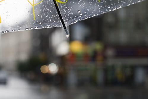 12/365 : Rain