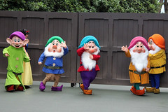 The Dwarfs leave for the parade