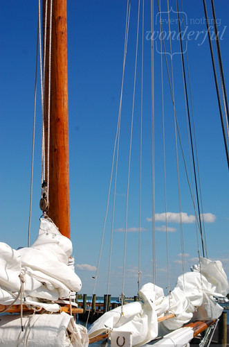 Sail lines 2