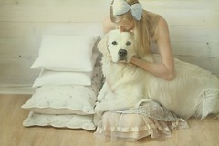 everyday fairytales (}~T~{) Tags: dog fairytale goldenretriever vintage golden eyes kiss dress retriever retro bow dreams dreamy ribbon whimsical dreamcatcher pastell baldur