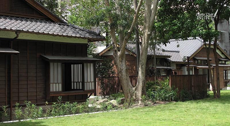 老樹與房舍