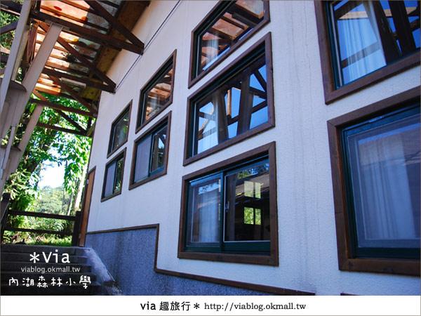 【溪頭一日遊】森林中的夢幻校園~內湖森林小學35