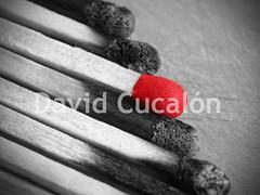 Matches (David Cucaln) Tags: blackandwhite bw macro blancoynegro cutout olympus bn match matches 2010 fineartphotography cerillas desaturado digitalcameraclub cucalon desaturadoselectivo mistos davidcucalon