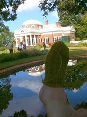 Rustic Monticello