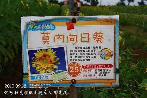 桃園觀音向陽農場20100918-071