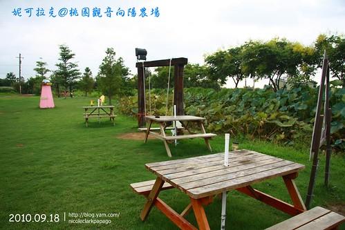 桃園觀音向陽農場20100918-114