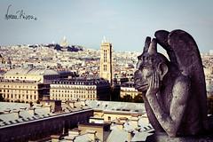Vigilando París