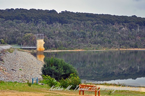 The weir at Lysterfield Lake Park