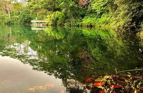 Ranamese Lake #3