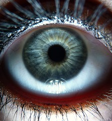 my blue blue eye. (Jegelskerdeg_) Tags: blue iris light macro green eye view details panasonic human grn blau makro auge pupil mensch wimpern pupille flickraward