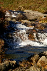 NorthGlenSannoxWater17 (Assja) Tags: autumn mountains fall water leaves forest landscape golden scotland highlands rocks stream heather herbst glen hills naturereserve valley bracken rowan isleofarran birches indiansummer birchtree schottland wirbel herbststimmung ruska naturreservat hochland wildbach zauberwald birkenwald farnkraut heidekraut ebereschen torfmoor remarkabletrees feenwald wildpfad thebrackenisgoldinthesun northendofarran subarktischestimmung