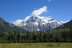 Mount Robson, Mount Robson Provincial Park (Tundra Viatges) Tags: field golden jasper glacier banff rockymountains mountrobson lakelouise kootenay revelstoke athabascariver athabascafalls yoho castlemountain emeraldlake lakeminnewanka peytolake icefieldsparkway johnstoncanyon takakkawfalls lacbeauvert lakemoraine lakemaligne waptafalls bowsummit mistayacanyon montaasrocosas lakepyramid lakepatricia mildredlake albertanationalparks canadanationalparks lakemedicine lagolouise muntanyesrocalloses lagomoraine parquesnacionalesdealberta parcsnacionalsdalberta parcsnacionalsdecanad parquesnacionalesdecanad cascadaswapta lagoemerald llacemerald cascadastakakkaw naturalbridgeyoho bawfalls canjohnton canjohnston lagominnewanka llacminnewanka llaclouise llacmoraine lagopeyto llacpeyto trefoillakes lakeannete