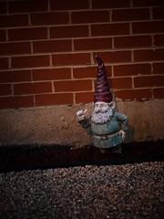 Are you talking to me? [Said with Spanish accent] (Angela&Martin) Tags: urban chicago brick digital illinois gnome olympus addison 510 gardengnome vinette e510 zd1454 1454