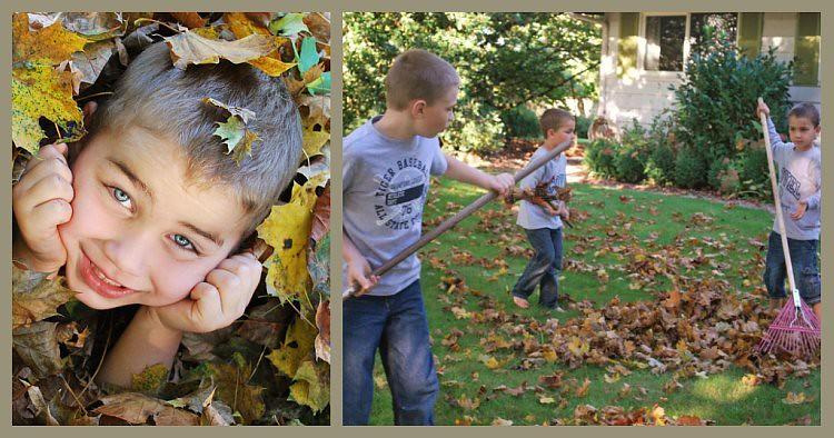 Picnik collage-Leaves