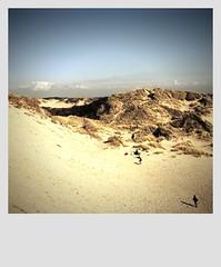 """France, Pas-de-Calais, stella-Plage, """" dunes """" Polaroïd."""