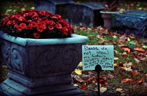 Please do not steal my father's flowers again. He did not do anything to you. Shame!