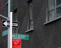 Mulberry Street Lower_Eastside  71 4spt10 287 (lotos_leo) Tags: lowereastside mulberrystreet nycstreen