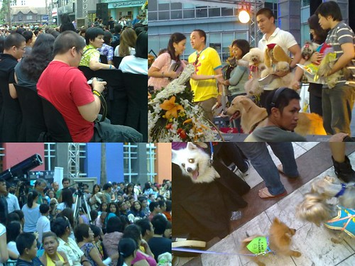 Eastwood Pet Blessing