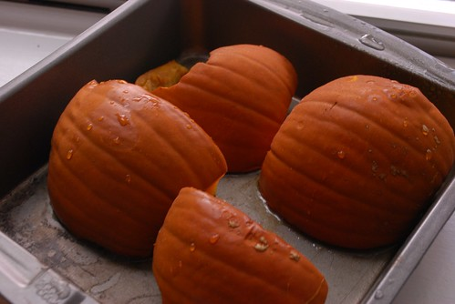 Allow the pumpkin to cool for 10-20 minutes, then take a spoon and scrape