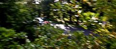 Ogier @ Rallye de France (guillaumedurand photography) Tags: france car sport race automobile action extreme rally best course wrc alsace driver fia rallye drivers pilote militarycamp worldrallychampionship bitche spéciale