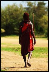 Masai Warrior (Tim N@ylor) Tags: africa lake elephant monkey tim buffalo honeymoon kenya flamingo lion lodge safari springs mara lions warrior cheetah serena cubs hippo elephants animalplanet masai bigcats naylor rino lodges masaimara masaiwarrior samburo worthog buffalosprings worthogs somak nakaru timnaylor