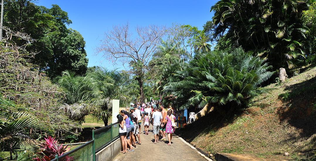 soteropoli.com fotografia fotos de salvador bahia brasil brazil 2010 zoo zoologico by tuniso (27)