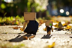 The Danbos and i go on holiday! *EXPLORE* (generalstussner) Tags: sun holiday leaves canon leaf bokeh backpack 5d adventures f4 24105 danbo ef24105l revoltech danboard 5dmarkii