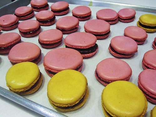 A Sea of Macarons!