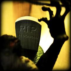 Conrad's Undead (Dalmatica) Tags: portrait halloween graveyard fun toy moody hand arm zombie cemetary tomb tombstone creepy spooky plastic direction horror reach trippy playfulness evocative dalmatica img1461 marianatomas halloweencountdown unead zombiecountdown