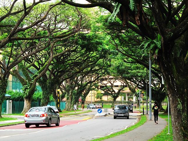 IMG_0165 Jurong West Street 52,Singapore