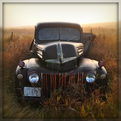 Out of the fog (Huleo-1) Tags: northdakota oldtruck rustyandcrusty ruinsandrust~photochallengewinner