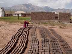 Preparing bricks (Evgeni Zotov) Tags: street people woman house mountain building brick work construction asia village mud dry row line kyrgyz build kyrgyzstan prepare construct kirghizistan kirgistan kirgizia alay kirgizistan kirgizi kirgisistan  kirguistan kirghizia sarymoghul krgzistan quirguisto         sarymogol