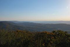 View from Bickle Knob (Bitmapped) Tags: usa unitedstates meadows westvirginia elkins bickleknob stuartmemorialdrive