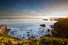 Golden Sundown Over Santa Cruz (Jinna van Ringen) Tags: ocean california longexposure flowers sunset sea usa santacruz beach night canon photography golden coast pacific ringen wideangle shore lee elusive van goldenlight jorinde jinna 1740mmf4 leefilters elusivephoto elusivephotography 5dmarkii 5dmk2 jorindevanringen jinnavanringen
