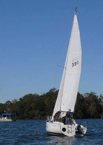 virginia sailing sailboatracing smithmountainlake sml blackwateryyra