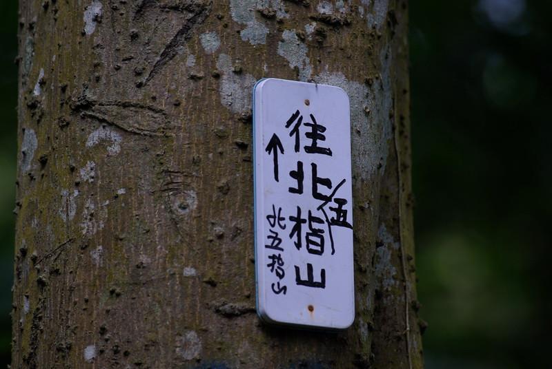 20101016軟橋登山步道生態隨拍