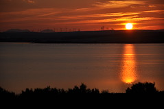 Puesta de Sol en la Laguna de Fuente de Piedra (Francisco_Gil) Tags: sol fuente laguna puesta molinos flamencos piedra elico