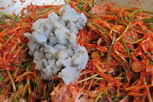 Making Kimchi: adding fresh shrimp