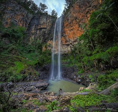 As for me, except for an occasional heart attack, I feel as young as I ever did. (Christolakis) Tags: waterfall nationalpark australia queensland hdr goldcoast purlingbrookfalls springbrook hinterland sigma1020 vertorama canon7d
