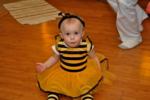 Little Bumblebee