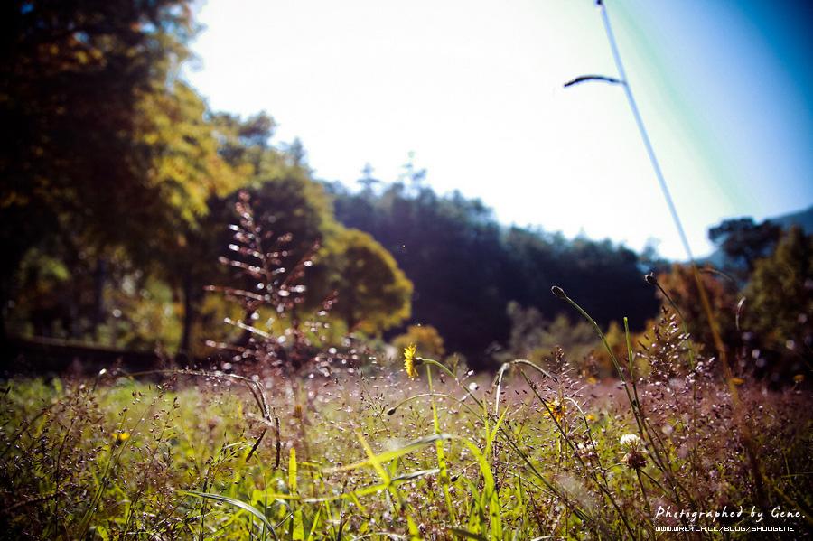 武陵農場和福壽山農場旅遊照片