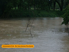 Rio Yuna Amenza (Noticias Arenoso Serie 119) Tags: de la bajo pagina yuna arenoso provduarte