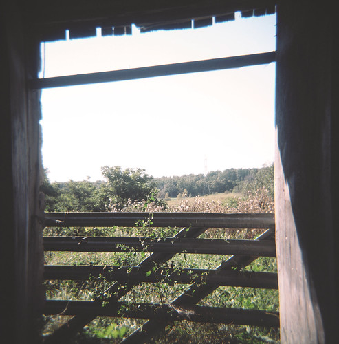 view from a barn