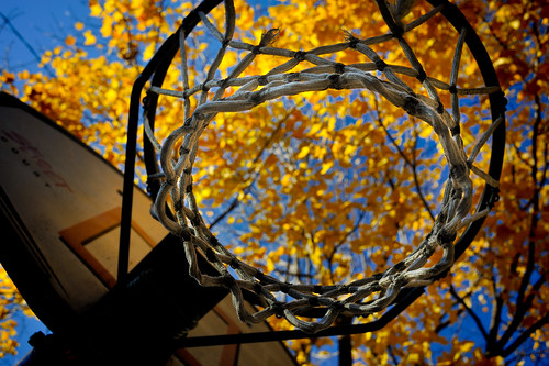 Hoop and leaves