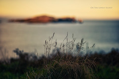 On the Lonely Island (Quicksil7er) Tags: ireland sunset sea sky howth color water composition focus bokeh manual quicksil7er