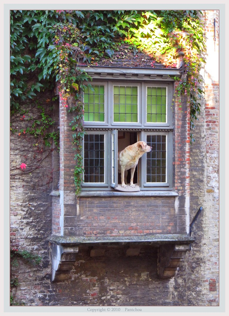 Bruges : Guard of the channel  ( Typical balcony )