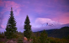 Shasta Under Cover (Tony Immoos) Tags: california lighting morning trees sky white mountain rock clouds sunrise landscape volcano postcard scenic landmark olympus e3 mtshasta mccloud siskiyoucounty californialandscape zd zuikodigital 1260mm olympuse3